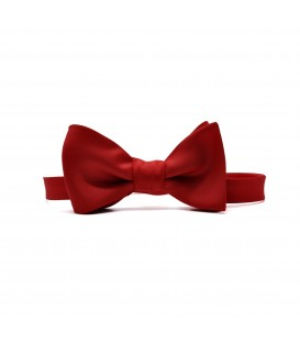 regulated red self-tie bow tie